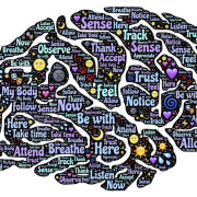 How Dental Health and Brain Health Are Connected
